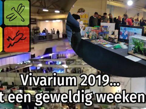 Vivarium 2019 3