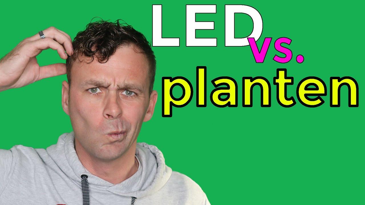 LED planten 2