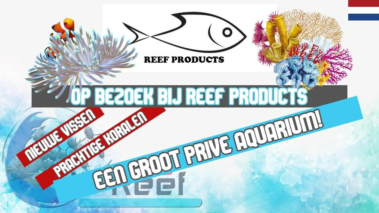 Reef Products 1