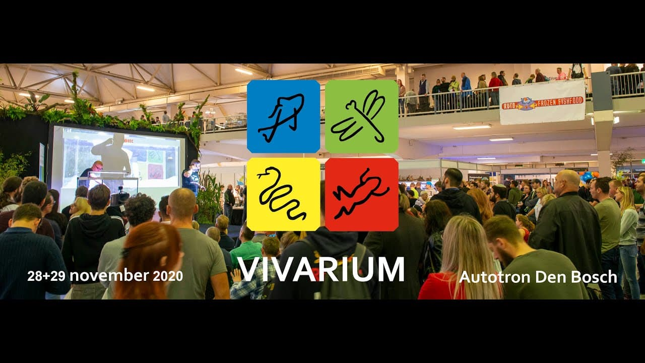 Vivarium Talk 1 18