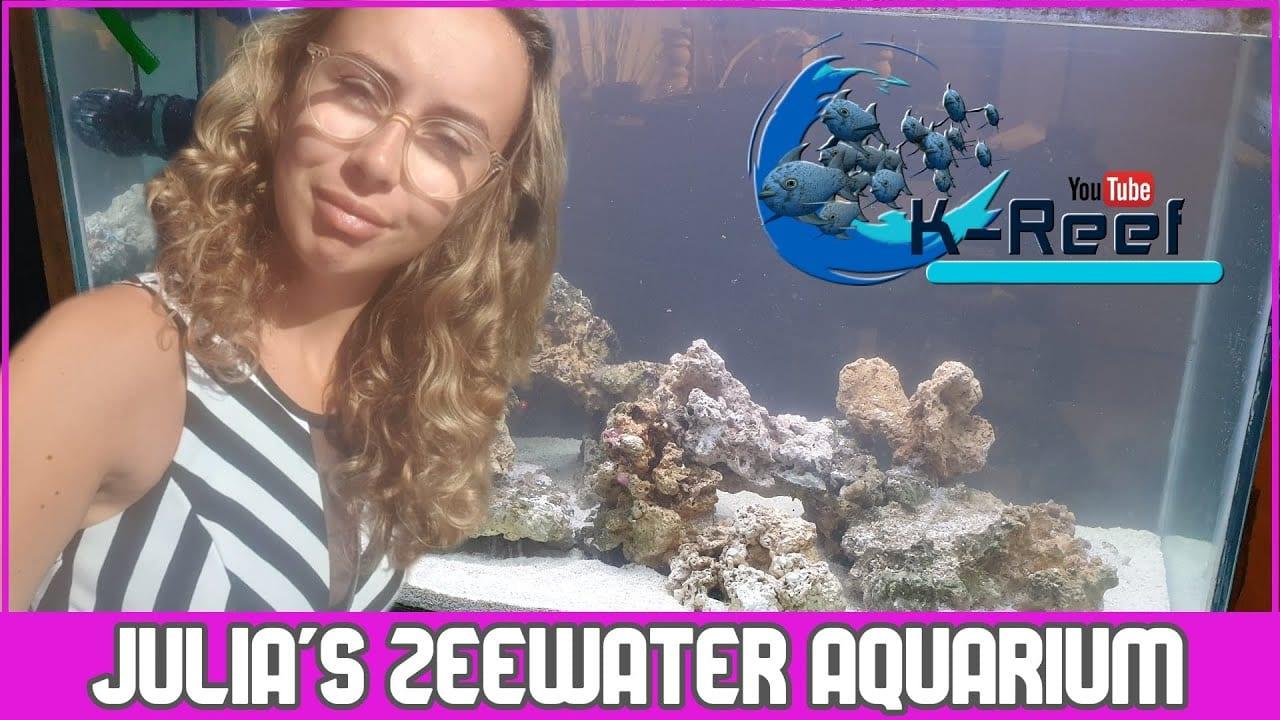 Zoutwater bak starten 6