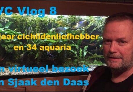 NVC vlog 8 - Een virtueel bezoek aan Sjaak den Daas 2